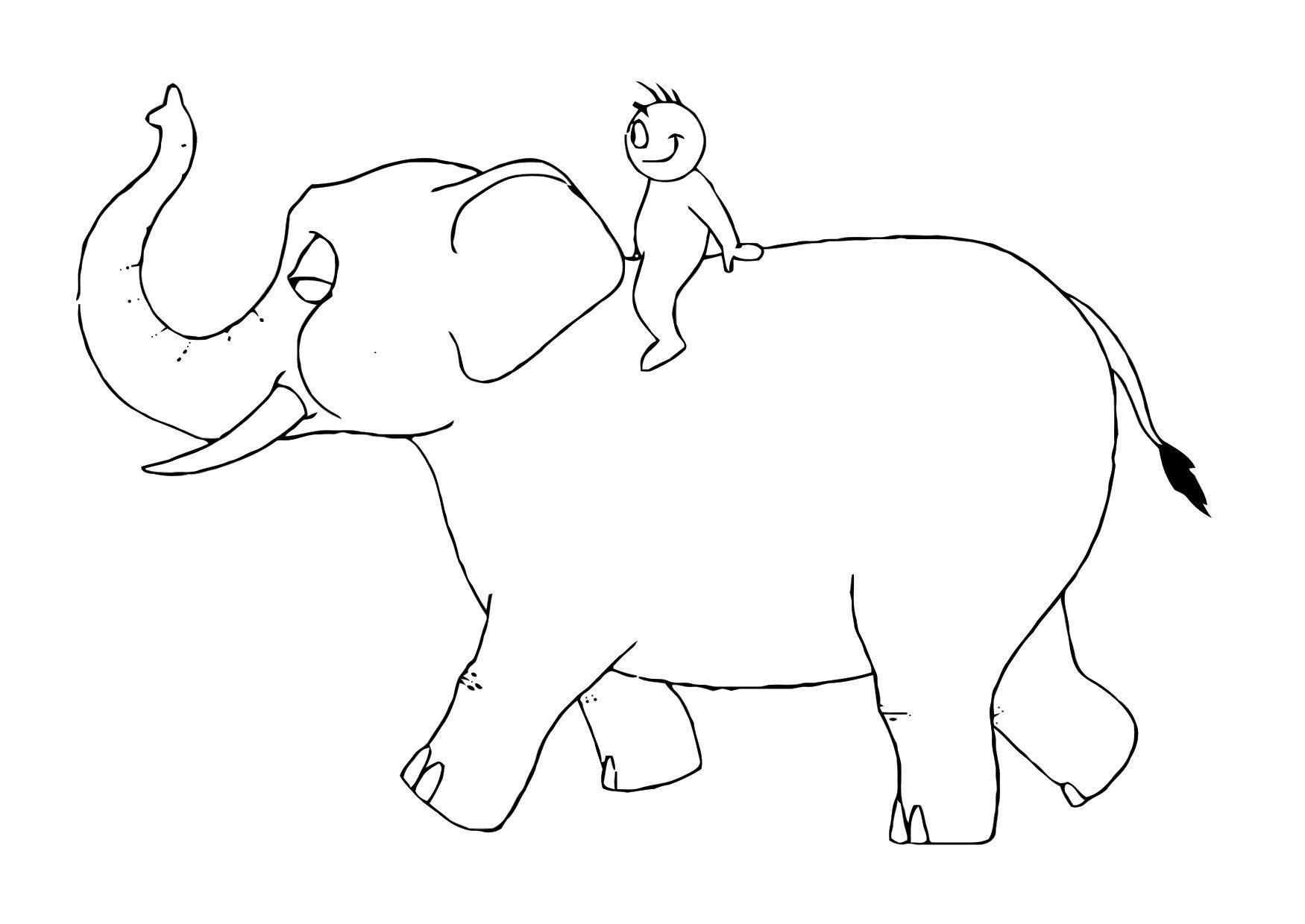 Kleurplaat Baby Dieren Disegno Da Colorare 07b Elefante Con Persona Disegni Da