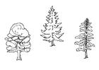 Disegno da colorare alberi