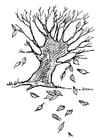 Disegno da colorare albero - foglie d'autunno
