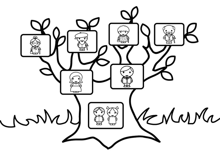 Disegni da colorare albero genealogico
