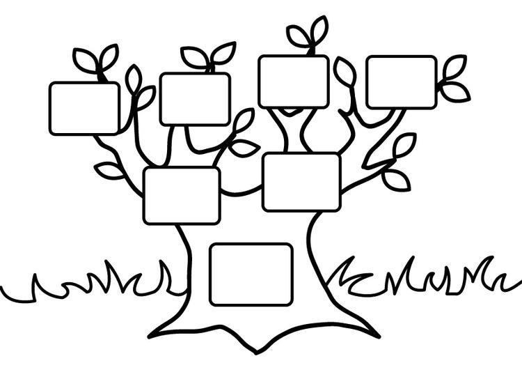 Disegno da colorare albero genealogico vuoto cat 26875 for Disegno giardino da colorare