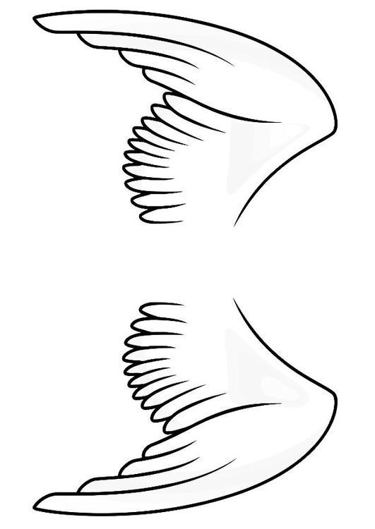Disegno Da Colorare Ali Cat 20666