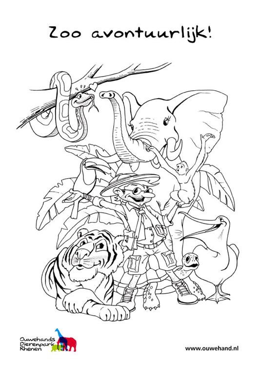 Disegno da colorare allo zoo cat 25581 - Zoo animali da colorare ...