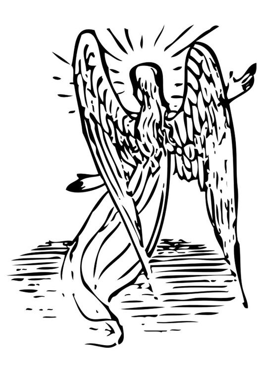 scarica immagini angelo disegno colorato  disegni da