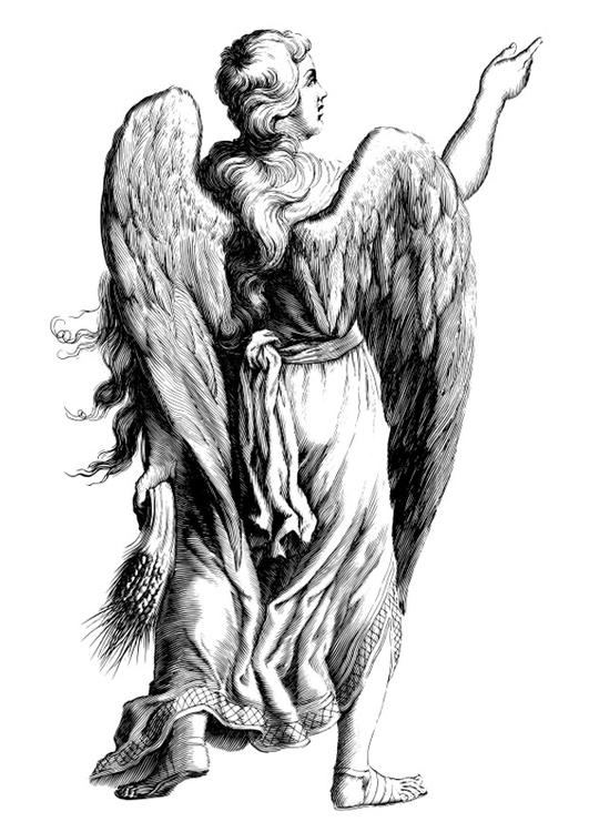 disegno da colorare angelo  disegni da colorare e