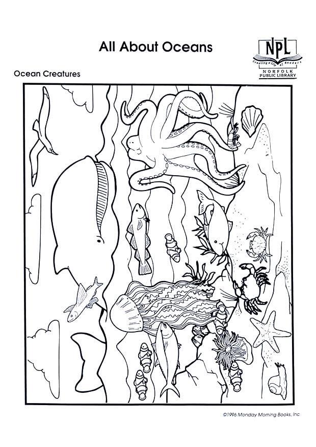Disegno da colorare animali marini cat 8987 images for Immagini fondali marini da colorare