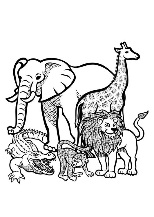 Disegno Da Colorare Animali Selvatici Disegni Da Colorare E