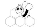 Disegno da colorare ape - davanti