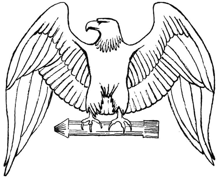 Disegno Da Colorare Aquila Cat 16018