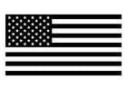 Disegno da colorare bandiera americana