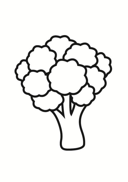 Disegno Da Colorare Broccoli Cat 23225