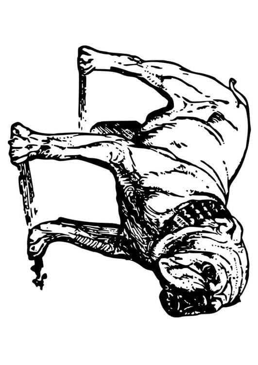 Disegno da colorare cane bulldog cat 18584 for Cane disegno da colorare