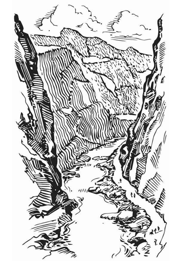 Kleurplaat Leeuwenkop Disegno Da Colorare Canyon Cat 13347