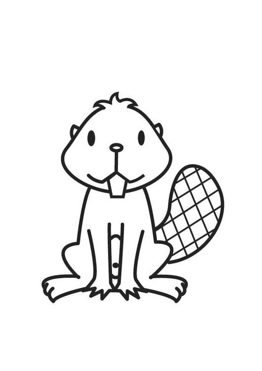 Disegno Da Colorare Castoro Cat 17702