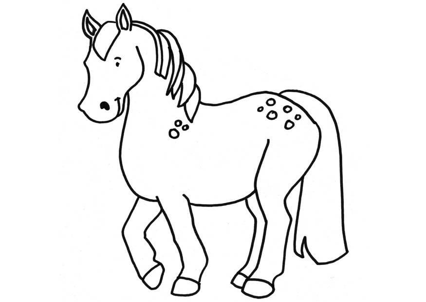 Disegno da colorare cavallo cat 18664 for Cavallo da disegnare per bambini