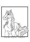 Disegno da colorare cavallo