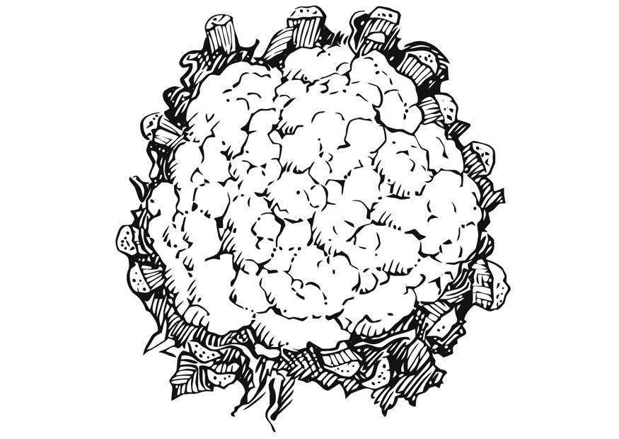 disegno da colorare cavolfiore