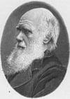 Disegno da colorare Charles Darwin
