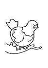 Disegno da colorare colomba