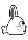 Disegno da colorare coniglio - profilo