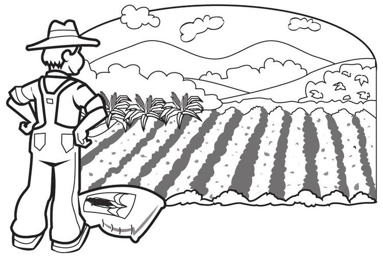 Disegno da colorare contadino 1 cat 8274 for Disegno pagliaccio da colorare