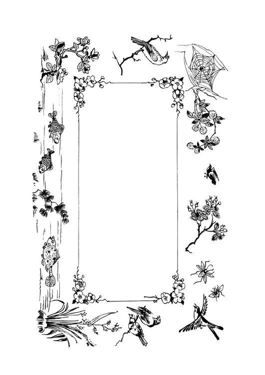 Disegno Da Colorare Cornice Natura Cat 28117