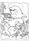 Disegno da colorare delfini 2