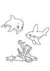 Disegno da colorare delfino e squalo