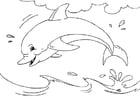 Disegno da colorare delfino