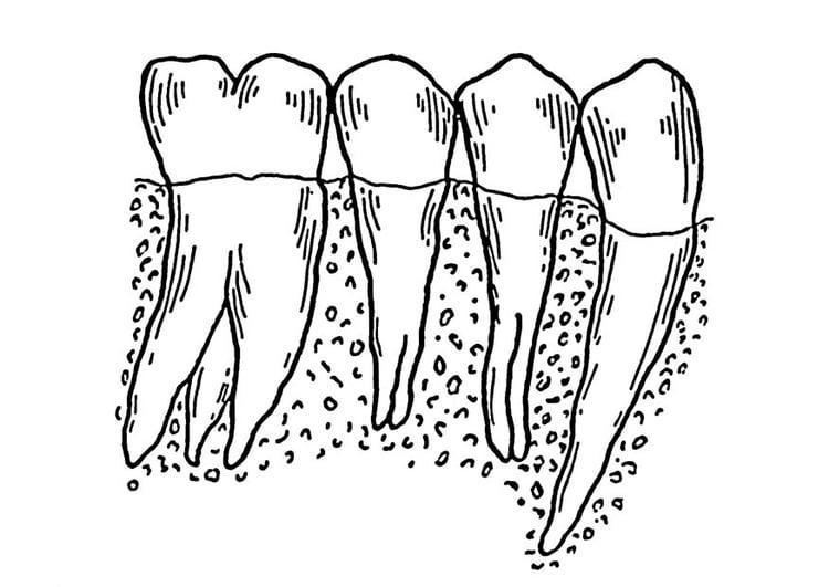 Disegno da colorare denti cat 18755 for Bocca da colorare