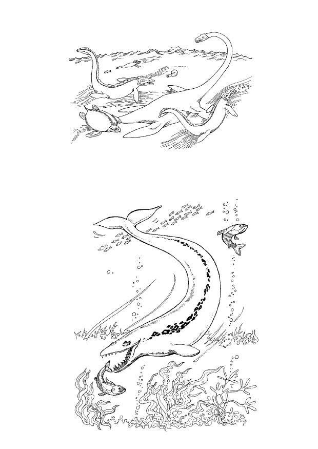 Disegno da colorare dino marini cat 9108 images for Disegni marini da stampare