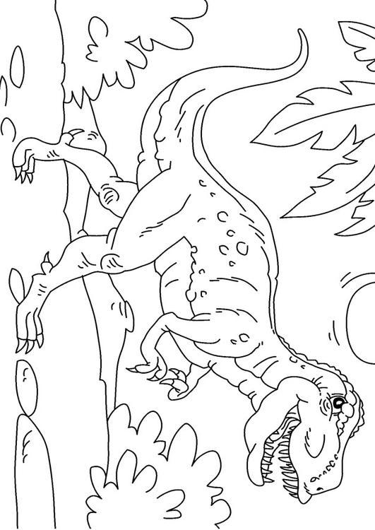 Disegno da colorare dinosauro tirannosaurus rex cat - Immagini di dinosauro da colorare in ...
