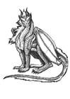 Disegno da colorare dragone