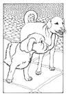 Disegno da colorare due cani