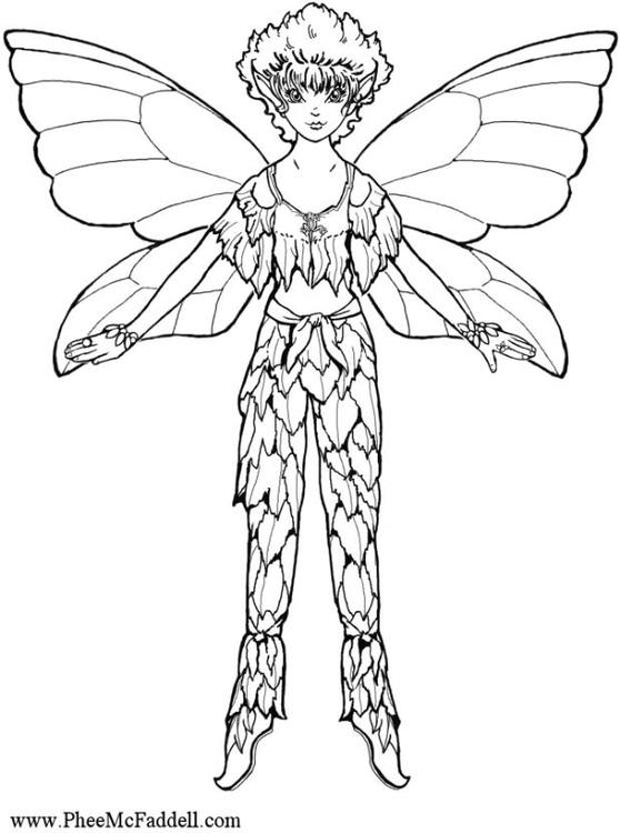 Disegno da colorare elfo cat 6886 - Elfo immagini da stampare gratuitamente ...