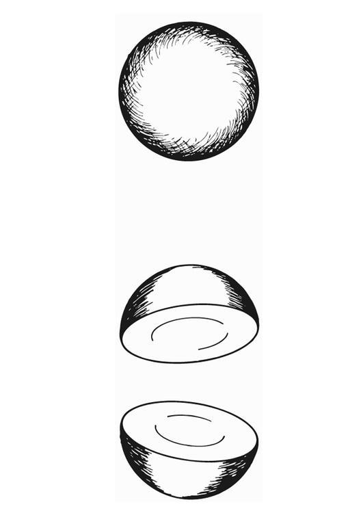 Disegno da colorare emisfero semi circolare cat 15639 for Disegno terra da colorare