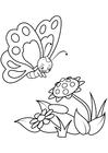Disegno da colorare farfalla con fiori