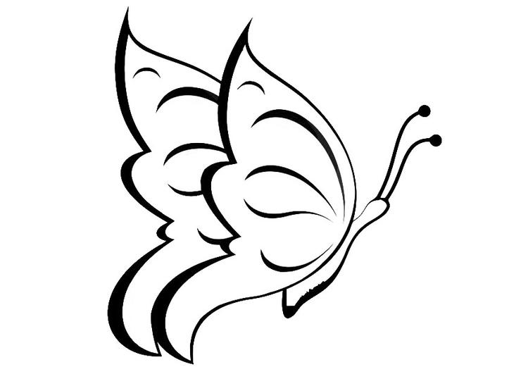 Disegno Da Colorare Farfalla Cat 20668