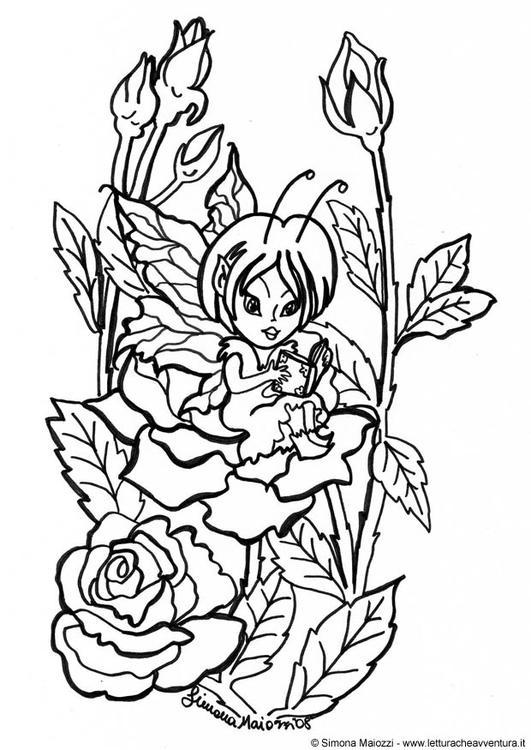 Disegno da colorare fata tra le rose cat 12404 for Colorare le rose