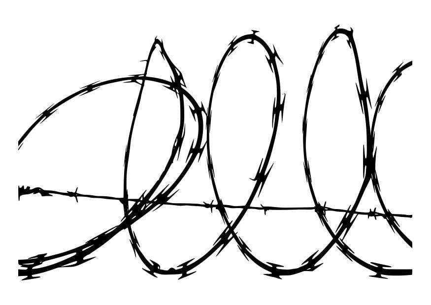 disegno da colorare filo spinato