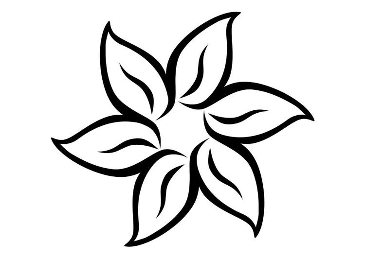 Disegno Da Colorare Fiore Cat 11710