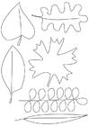 Disegno da colorare foglie