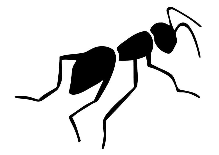 Disegno da colorare formica cat 19473 for Scarica clipart
