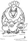 Disegno da colorare gallina con pulcini