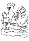 Disegno da colorare gallo e gallina