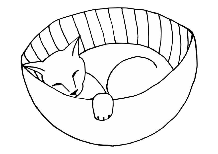 Cane Che Dorme Disegno.Disegno Da Colorare Gattino Che Dorme Disegni Da Colorare E