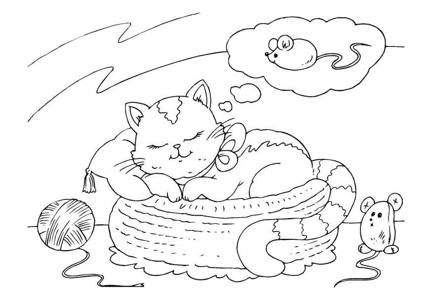 Disegno da colorare gatto che sogna cat 22642 images for Cani e gatti da stampare e colorare