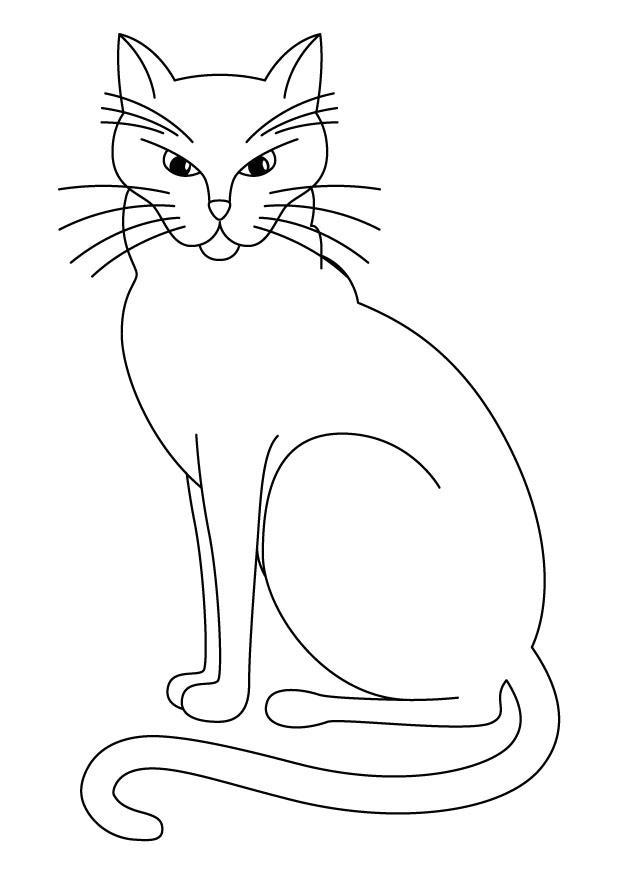 Disegno Da Colorare Gatto Cat 17442