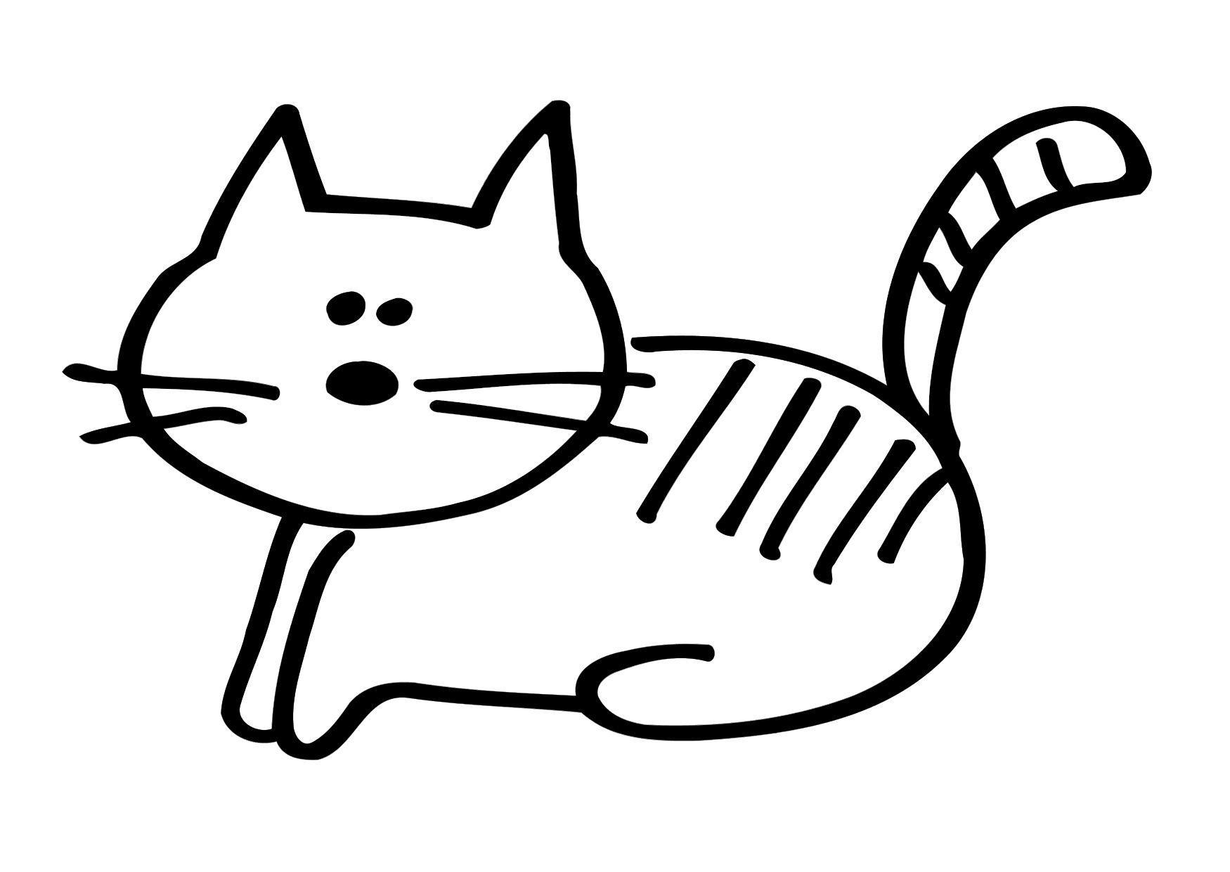 Top Disegno da colorare gatto - Cat. 17445. SY23