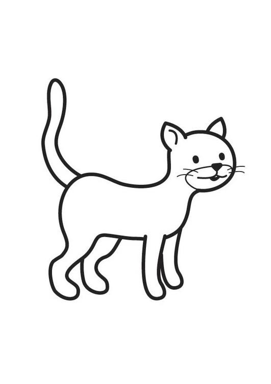 Disegno Da Colorare Gatto Cat 17765